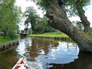 wetlands-Iamsterdam18